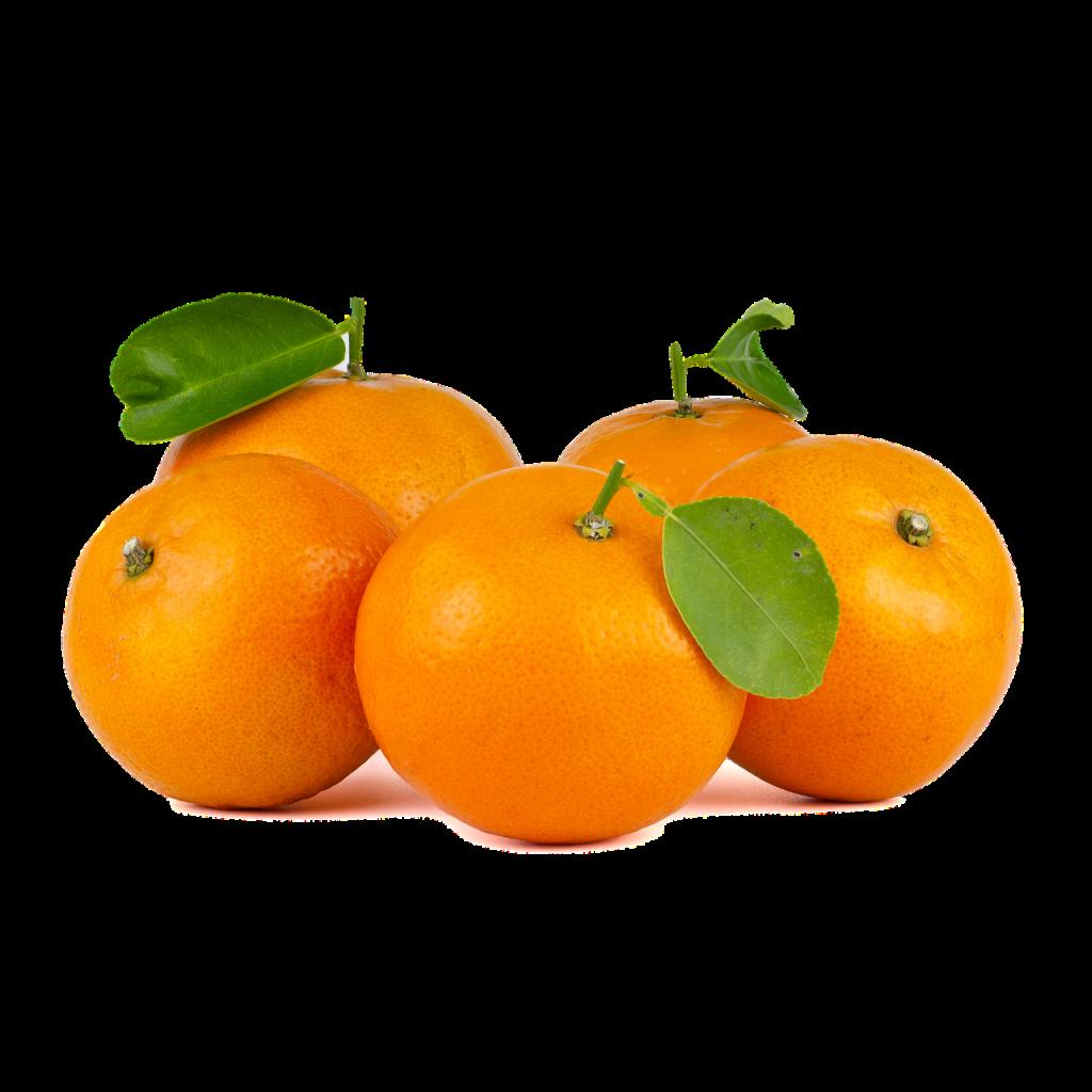 Orange Juice Fruit Healthy Drink