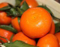 Tangerine Fruit Orange Ripe